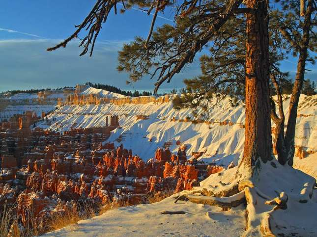 Bryce Canyon in winter, from Sunset Point